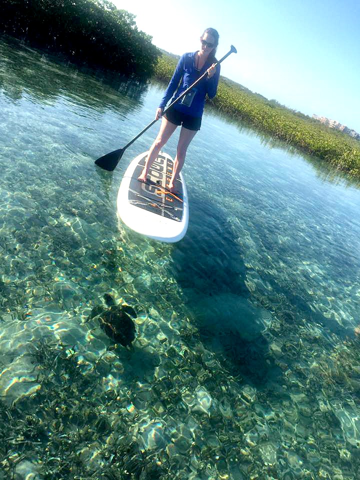 supturtlemangroves_totaladventureco_turksandcaicos-adjusted